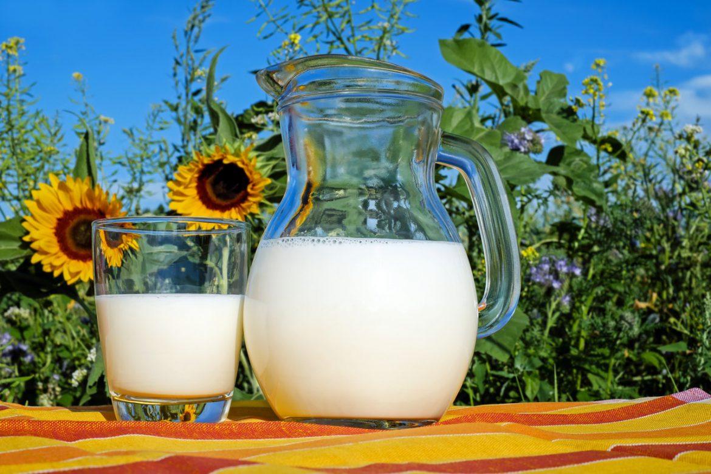 Co zamiast mleka krowiego?